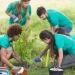 Pesquisa aponta que jovens estão mais preocupados com o meio ambiente